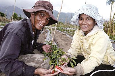 越南农村开发CSV项目