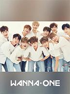 CJ打造的音乐家组合Wanna One!<br>为世界舞台献上感动