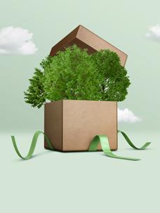 Eco_Packaging