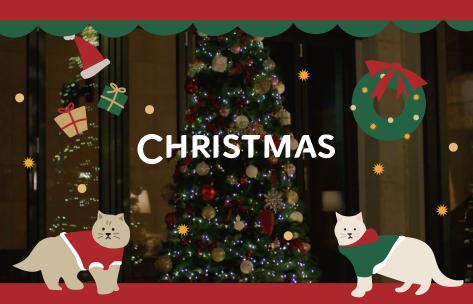 [懵.确.幸] EP.06 (⚠️心动警报) 圣诞节🎄会下雪喵❄?有人要和喵星人🐈一起看着树发呆吗!?️